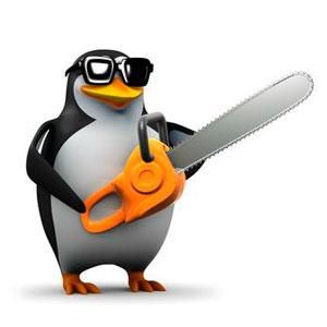 el_nuevo_algoritmo_de_google_penguin