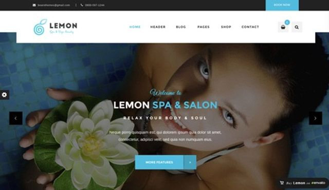 Tema WordPress Lemon