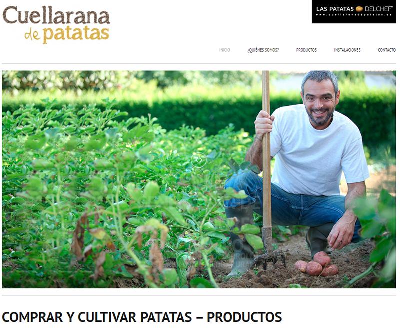 cuellarana de patatas-1
