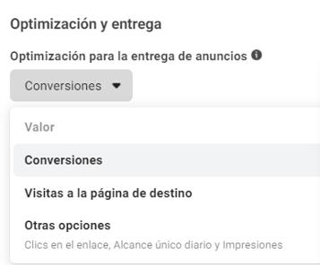 Opciones de Entrega de Anuncios en Facebook Ads