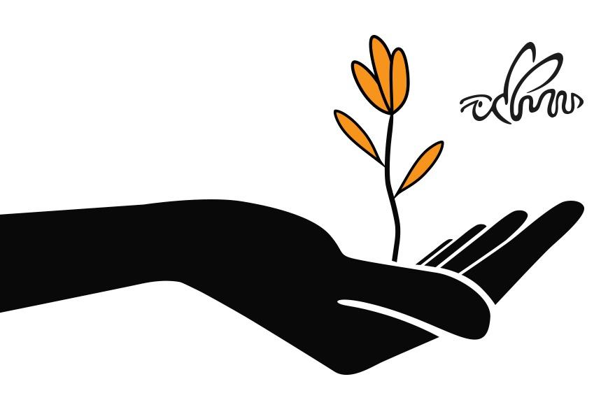 Planta creciendo con Abeja MarketiNet