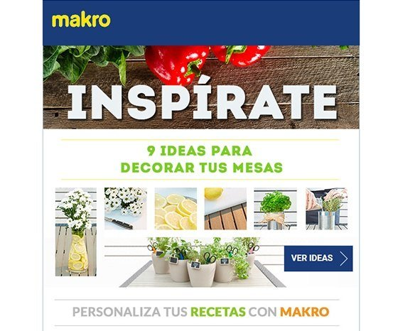 makro email marketing - 1