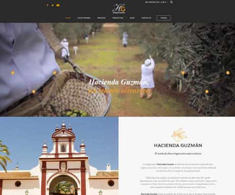 Tienda ecommerce hacienda Guzmán - home